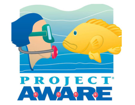PADI Specialty Course – AWARE Fish Identification